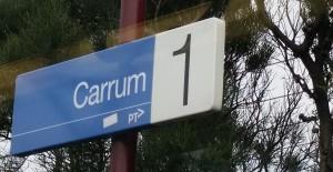 Yoga class Carrum
